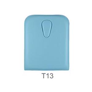 Têtière T13